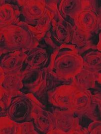 Decopatch papier rode rozen*