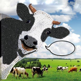 Crystal Card kit diamond painting Funny Cow Koe 18x18