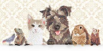 Crystal Card kit diamond painting Animal Family 11 x 22 cm