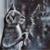 Full 5D Diamond Painting Kat spiegelbeeld in raam 30 x 30 cm
