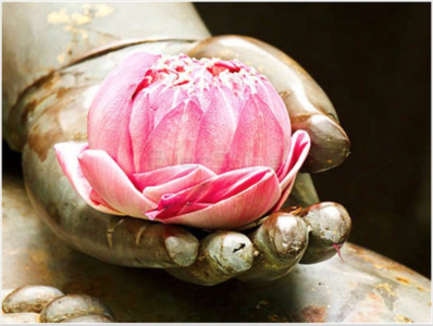 Full 5D Diamond Painting Lotus in hand 50 x 40 cm